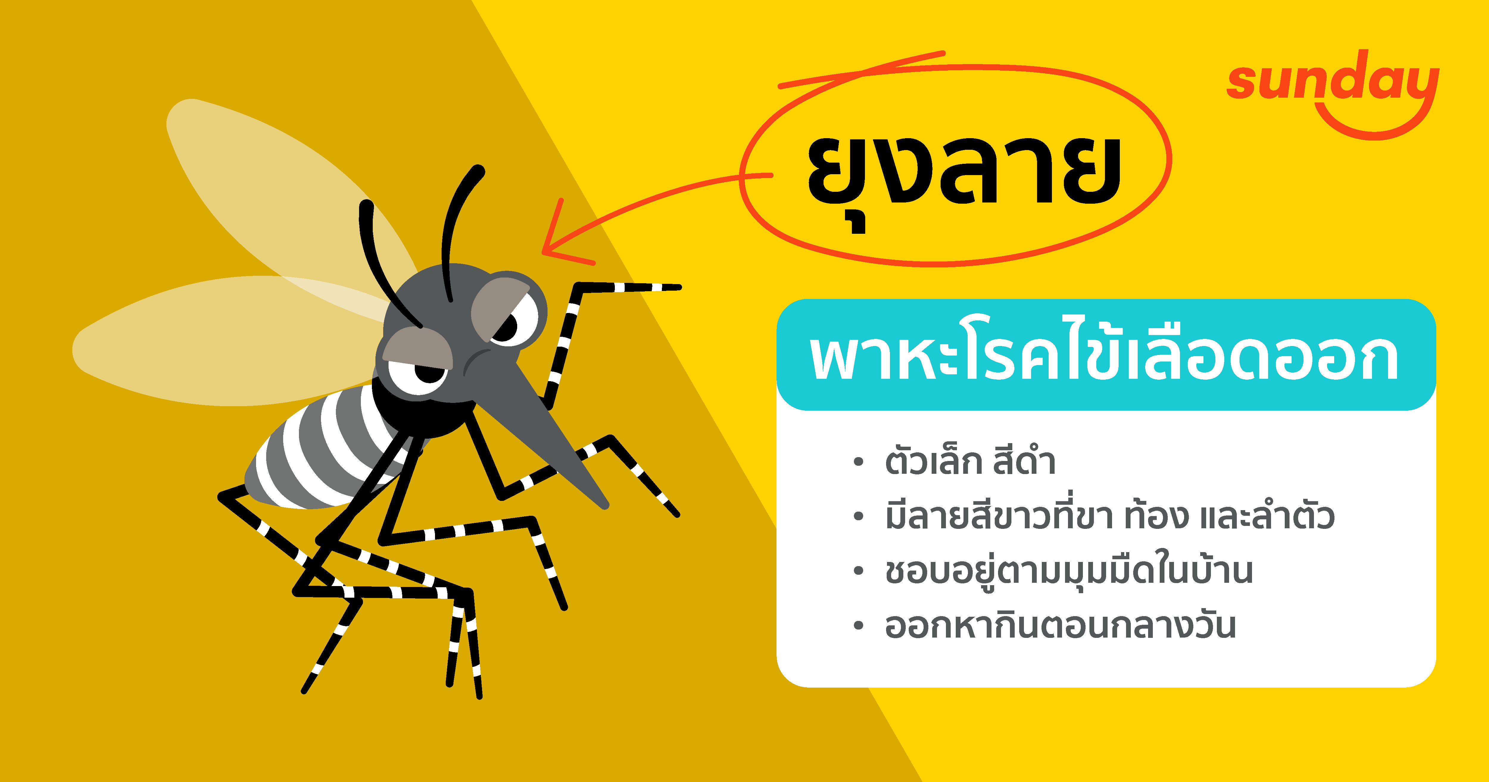how-to-protect-you-business-from-dengue-virus